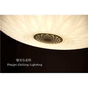 シーリングライト(照明器具) LEDタイプ/4000ルーメン 自然光色 円形/花柄模様 レトロ風 〔リビング照明/ダイニング照明〕【電球付き】