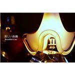 ペンダントライト(吊り下げ型照明器具) ガラス製 〔リビング照明/ダイニング照明〕【電球別売】