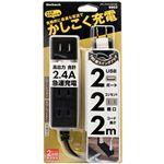 (まとめ) オウルテックUSB充電ポート付スマートOAタップ ブラック 2m OWL-OTA2U2S20-BK 1個 【×5セット】