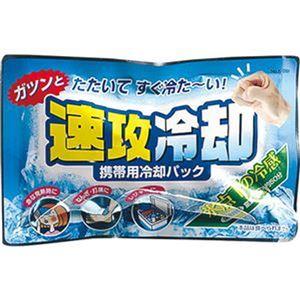 (まとめ)紀陽除虫菊 携帯用冷却パック 速攻冷却K-2001 1セット(10個)【×10セット】 - 拡大画像