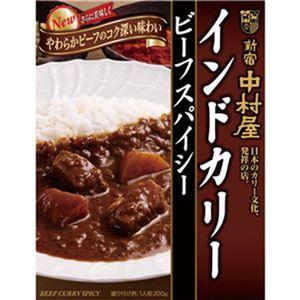 (まとめ)中村屋 インドカリー ビーフスパイシー200g 1パック(5食)【×10セット】 - 拡大画像