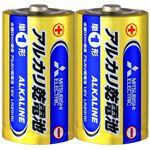 (まとめ)三菱電機 アルカリ乾電池 単1形 LR20N/2S 1セット(20本:2本×10パック) 【×3セット】