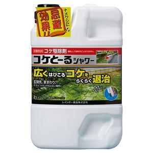 (まとめ)レインボー薬品 コケとーるシャワー 2L 1本 【×5セット】 - 拡大画像