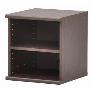 カラーボックス(収納棚/カスタマイズ家具) 2段 【幅40cm×高さ43.5cm】 エイ・アイ・エス 『エシカ』 5040 ブラウン