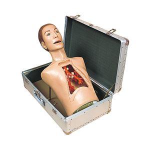 気管支内視鏡練習モデル(看護実習モデル人形) 専用ケース付き M-136-0 - 拡大画像