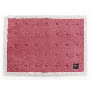 抗菌 バスマット/フロアマット 【ピンク】 45×60cm 吸水 速乾 防滑 『オカ 乾度良好 Agクリーンフット』 〔脱衣所 洗面所〕 - 拡大画像