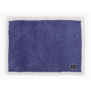 抗菌 バスマット/フロアマット 【ブルー】 45×60cm 吸水 速乾 防滑 『オカ 乾度良好 Agクリーンフット』 〔脱衣所 洗面所〕 - 拡大画像