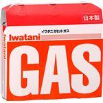 【iwatani イワタニ】 カセットガス/カセットガスボンベ 【3本組】 イワタニ カセットフーシリーズ専用 調理 【16個セット】