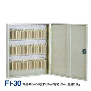 キーボックス/鍵収納箱 【壁掛け固定式/30個掛け】 スチール製 タチバナ製作所 Fi-30