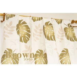 8種類から選べるデザインカーテン・ミラーレースセット 【計4枚組 100×178cm/ブラウン】 モンステラ柄 洗える 『モンステラ』 - 拡大画像