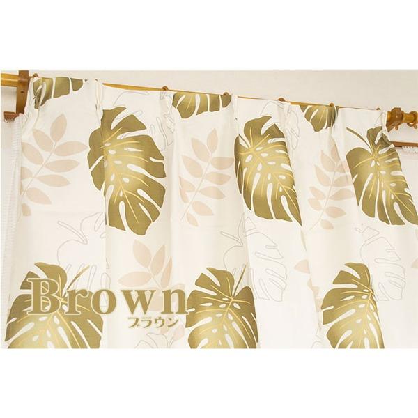 8種類から選べるデザインカーテン・ミラーレースセット 【計4枚組 100×178cm/ブラウン】 モンステラ柄 洗える 『モンステラ』