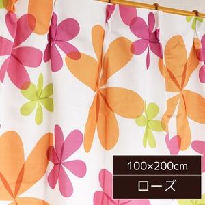 可愛らしい北欧風カーテン 2枚組 100×200cm ローズ リーフ柄 子供部屋 パルティ - 拡大画像