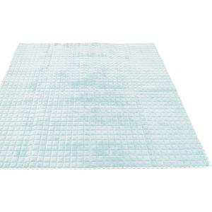 7色から選べる キルティングラグ 185×185cm ブルー ラグ 敷布団 ホットカーペット対応 洗える シンプル キルト 縁チェック柄 エース掛け - 拡大画像