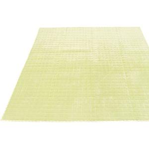 7色から選べる キルティングラグ 200×250cm グリーン ラグ 敷布団 ホットカーペット対応 洗える シンプル キルト 縁チェック柄 エース掛け - 拡大画像