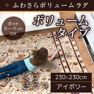 ボリューム ラグマット/絨毯 【230cm×230cm 正方形 アイボリー】 ホットカーペット/床暖房可 『サラサボリュームラグ』
