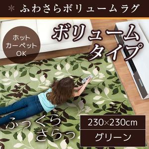 ラグ ボリュームタイプ 230×230cm 正方形 グリーン ラグマット ホットカーペット対応 床暖房 秋用 冬用 フォリアボリュームラグ - 拡大画像