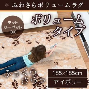 ラグ ボリュームタイプ 185×185cm 正方形 アイボリー ラグマット ホットカーペット対応 床暖房 秋用 冬用 エバリーフボリュームラグ - 拡大画像