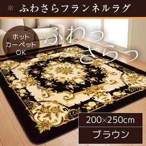 ラグマット/絨毯 【200cm×250cm 長方形 ブラウン】 ホットカーペット 床暖房対応 フランネル地 防音 『ファーベル』 - 拡大画像
