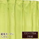 10色から選べる遮光カーテン 2枚組 100×178 グリーン 無地 シンプル 洗える タッセル付き ペアリー