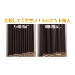 カーテン 2枚組 2枚セット 2P 防炎 2級遮光 100×丈215cm ブラック ダリア