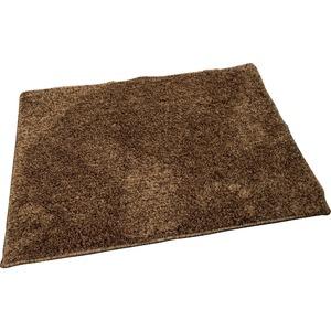 玄関マット マット 室内 屋内 芝生マット 45×65cm ブラウン オーシャン