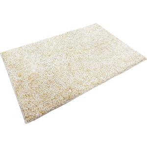 玄関マット マット 室内 屋内 芝生マット 55×85cm ベージュ オーシャン