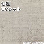 断熱 遮熱 レースカーテン 幅100×丈198cm 2枚 省エネ エコリエスクエア UV84%カット 九装