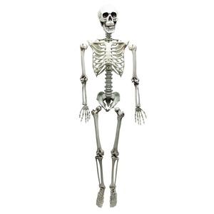 コスプレ衣装/パーティーグッズ 【等身大骸骨】 仮装 イベントグッズ 舞台小物の画像