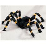 (まとめ)SUNSTAR Orange/Black Spider-S(スパイダー)【×2点セット】