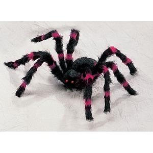 (まとめ)SUNSTAR Red/Black Spider-S(スパイダー)【×2点セット】 - 拡大画像