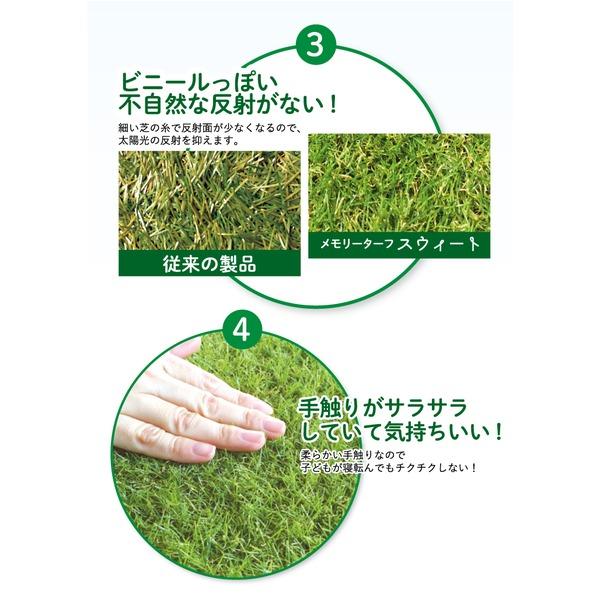 高品質 形状記憶 人工芝 メモリーターフ スウィート 巾2m×長さ5m(芝の長さ20mm) MTS20-0205