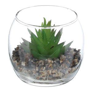 ベストコ フェイク テラリウムグリーン グラス丸M II - 拡大画像