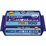 (業務用20セット) 日本製紙クレシア アクティトイレに流せるおしりふき100枚