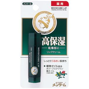 (業務用20セット) 近江兄弟社 モイスキューブブリップメントール4g - 拡大画像