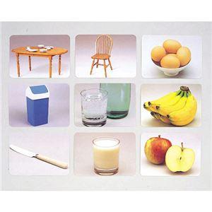 DLM 言語訓練写真カード2 食物と家具1245S - 拡大画像