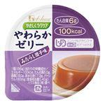 (まとめ) ハウス食品 やわらかプリン みたらし団子味(48入)【×3セット】 border=