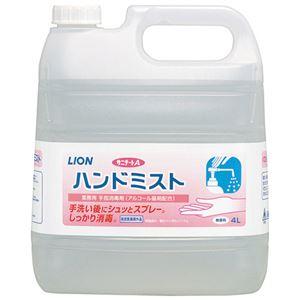 (まとめ) ライオンハイジーン サニテートAハンドミスト 4L【×3セット】