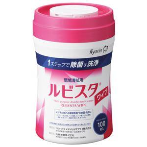 (まとめ) キョーリン ルビスタ 詰替ワイプ入専用容器 100枚入【×10セット】