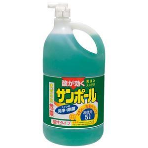 (まとめ) 大日本除蟲菊 サンポール 3L【×10セット】