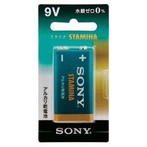 (まとめ) ソニー アルカリ乾電池スタミナ9V 6LR61SG-BHD【×10セット】