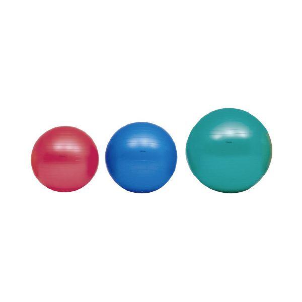 (まとめ)ボディーボール55cm 赤 H7261【×2セット】