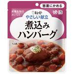 (まとめ)やさしい献立 煮込みハンバーグ(6袋入)【×5セット】