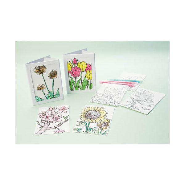(まとめ)羽立工業 お花の塗り絵はがきセット 50枚 RH4202【×3セット】