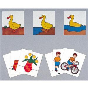 DLM 配列絵カード II 161 - 拡大画像
