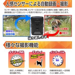 【トレイルカメラ】赤外線ライト搭載トレイルカメラ『Radiant40』(ラディアント40) 商品写真5