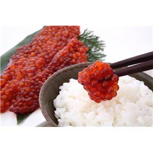紅鮭筋子醤油漬け(1kg) - 拡大画像