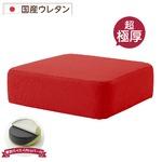 極厚 低反発クッション/インテリア雑貨 【スクエアタイプ レッド】 洗えるカバー 日本製ウレタン使用 『Pastel』