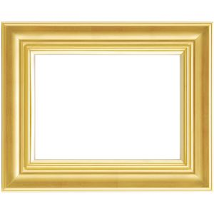 軽量 油絵額物/油額 【F30 ゴールド】 表面カバー:アクリル 『まじかるフレーム』