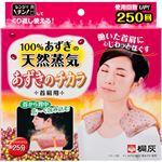 (まとめ)桐灰化学 100%あずきの天然蒸気 あずきのチカラ 首肩用 【×3点セット】