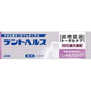 ライオン デントヘルス薬用ハミガキしみるブロック 85g × 10 点セット - 拡大画像